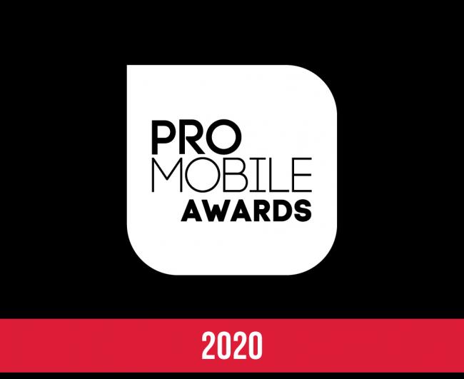 PRO mobile awards 2020 dj's dj award winner Brian Mole